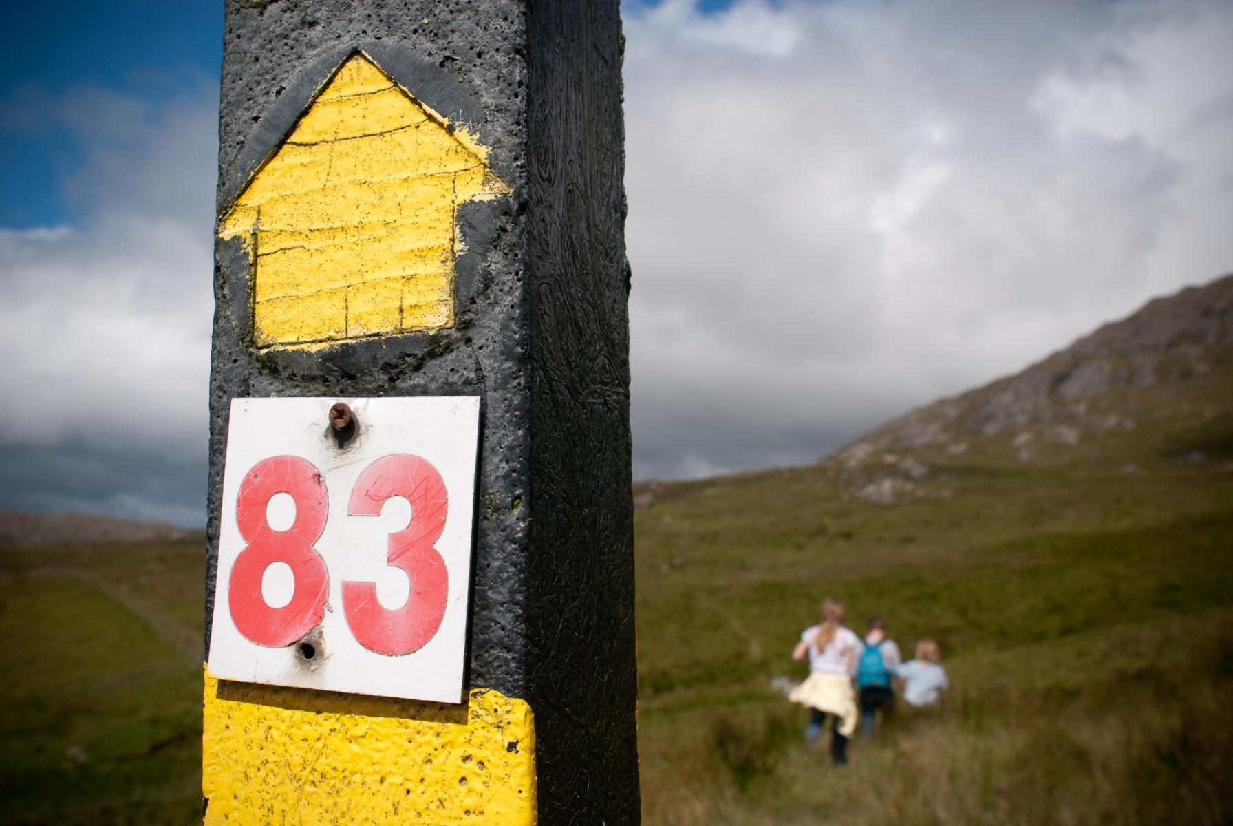 Eighty Three-Beara